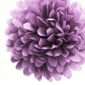 pom-pom-violeta
