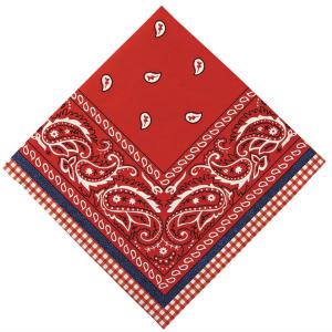 servilletas-pequeñas-vaquero-450296